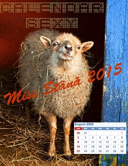 calendar sexy miss stana 2015
