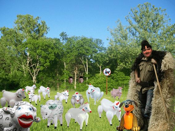 transhumanță cioban oi gonflabile