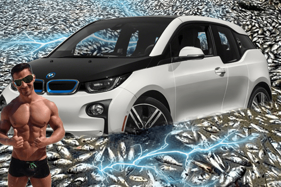 cocalar masina electrica BMW litoral