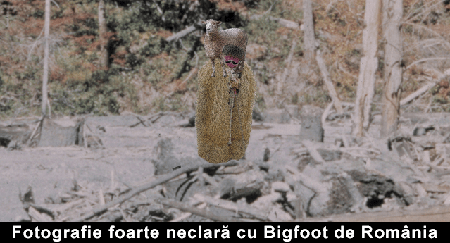 Bigfoot de Romania nestire