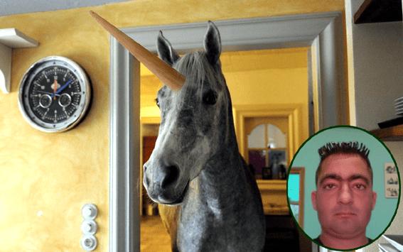 tauri curse Pamplona unicorni