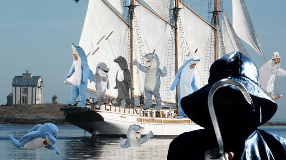 Insulele Feroe romani delfini